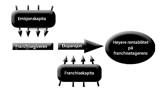 Figur 7: Teorien om det doble kapitalmarkedet.
